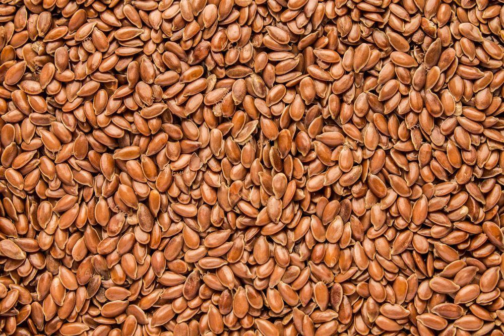 По прогнозам Казахстан за сезон 2020-2021 г. экспортирует 540 тыс. тонн льна